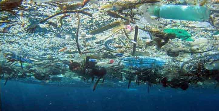 Déchets plastiques marins
